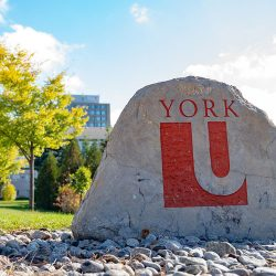 "York University: Your Fall ""First Look"" @ Virtual"
